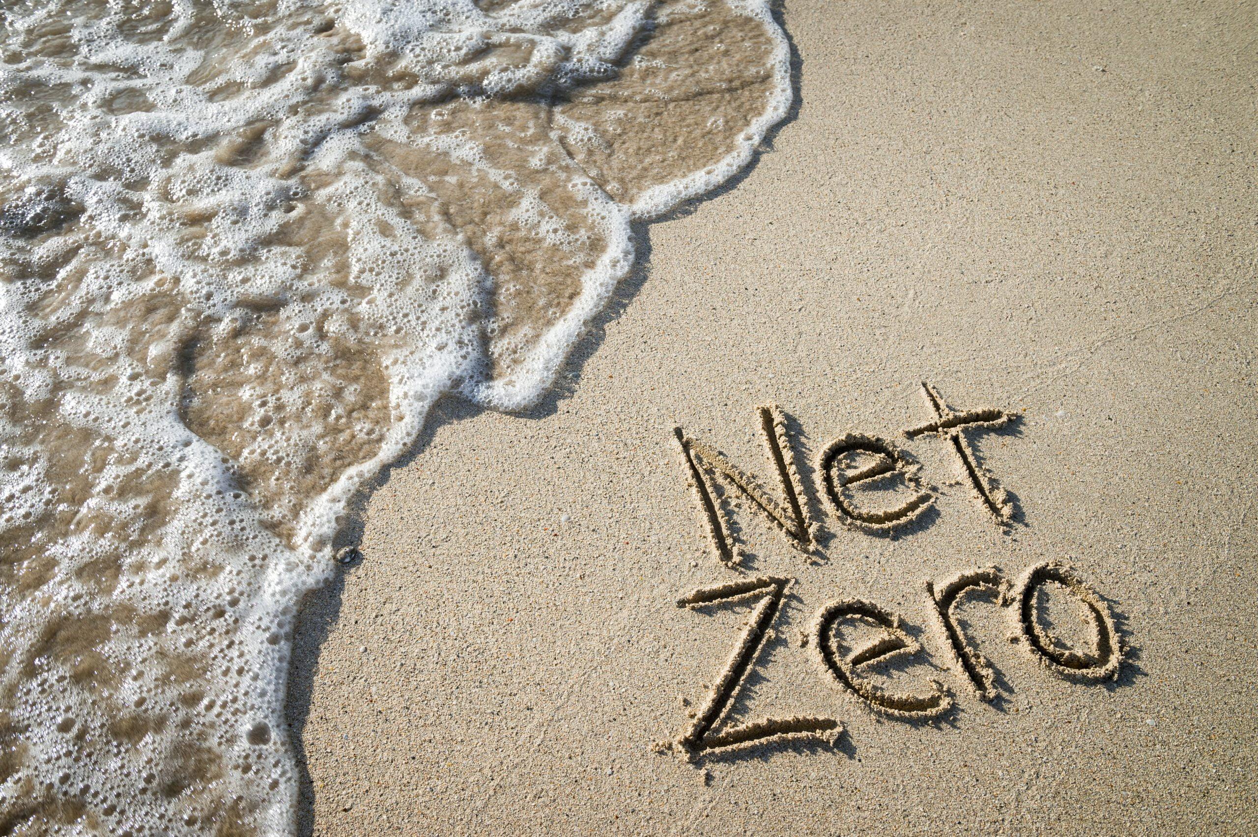 Net Zero Business